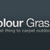 Colour Grass