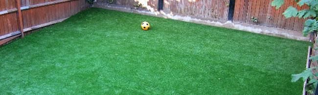 garden lawn close up photo