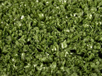 golf putting green grass